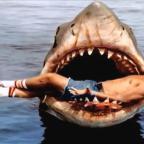 Bruce, a Cápa hőse beköltözik az amerikai filmakadémia jövőre megnyíló múzeumába