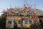 Nagyatádon 2500 húsvéti tojással feldíszítettek fel egy fát