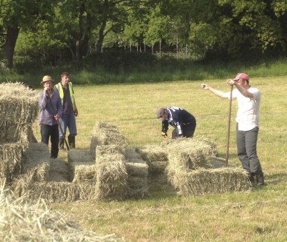 farming-hay-making