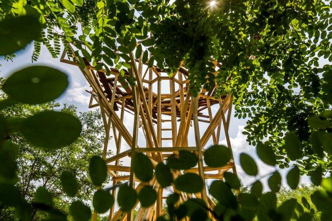 Vigántpetend, 2016. július 23. A Hello Wood építészeti workshop installációja a Vigántpetendhez tartozó Csórompusztán a 26. Mûvészetek Völgye 2016 kulturális fesztiválon 2016. július 23-án. MTI Fotó: Szigetváry Zsolt