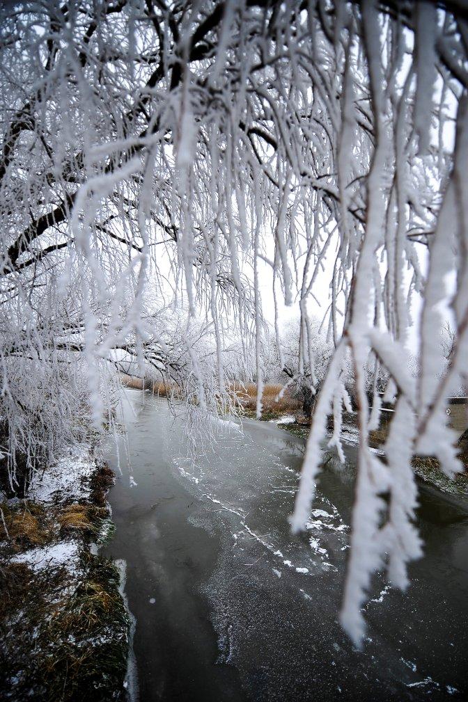 Ecsegfalva, 2016. december 20. A Hortobágy-Berettyó folyó befagyott szakasza a Békés megyei Ecsegfalva közelében 2016. december 20-án. A hideg idõjárás miatt elkezdett teljesen befagyni a folyó, néhol öt centiméter vastagságú a jég. MTI Fotó: Czeglédi Zsolt
