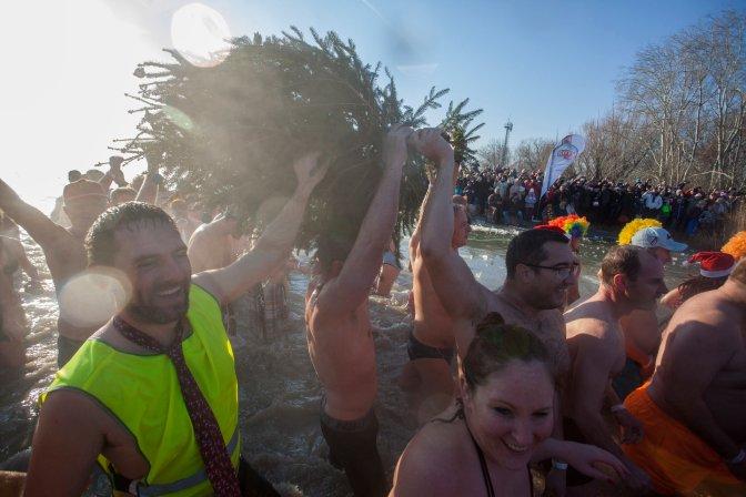 Szigliget, 2017. január 1. Résztvevõk kihozzák a december 24-én felállított karácsonyfát a jeges Balatonból a 6. Újévi csobbanás elnevezésû rendezvényen a szigligeti strandon 2017. január 1-jén. MTI Fotó: Varga György