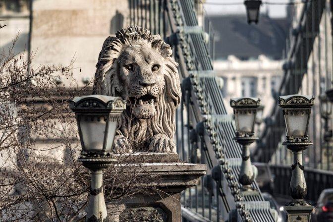 Budapest, 2017. január 11.  A Széchenyi Lánchíd budai, bal oldali kõoroszlánja 2017. január 10-én. A szobrot Marschalkó János lõcsei szobrászmûvész készítette. MTI Fotó: Szigetváry Zsolt
