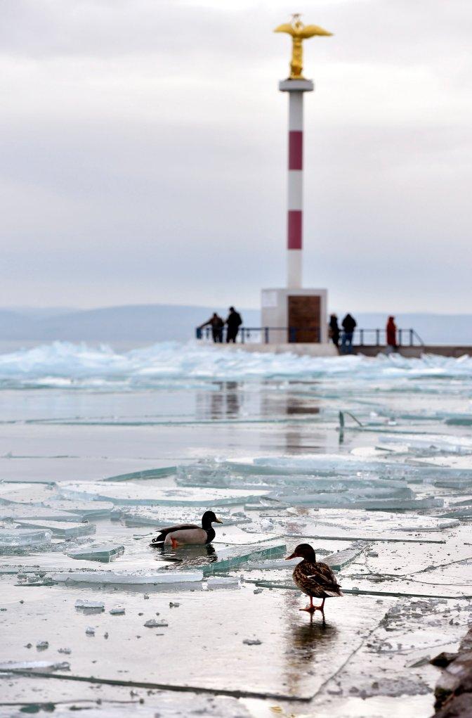 Siófok, 2017. január 4. Madarak jégtáblákon a siófoki móló közelében 2017. január 4-én. MTI Fotó: Máthé Zoltán